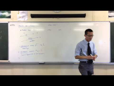 Co-Interior Angles on Parallel Lines